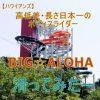 BIG☆ALOHA(ビックアロハ)